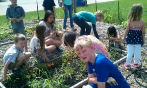 Children garden outreach